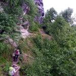 Wölfe im Elbsandsteingebirge