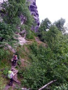 Read more about the article Wölfe im Elbsandsteingebirge