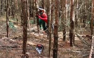Holzaktion
